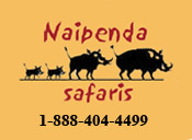 image of the Naipenda Safari Logo